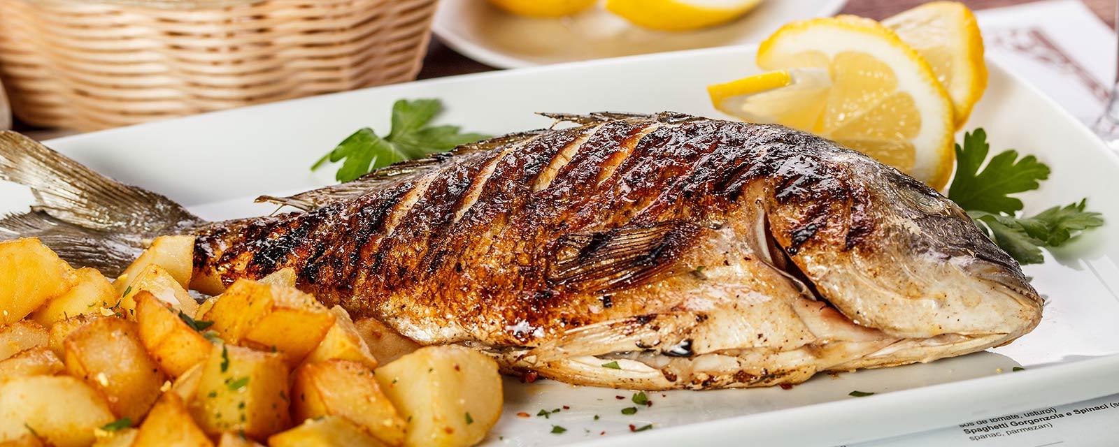 balık rest